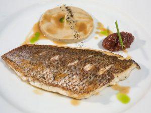 Gastronomy Products of Halkidiki Region